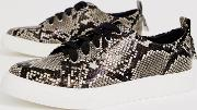 Durban Pointed Lace Up Trainers Snake Print