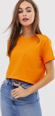 Organic Cotton Crop