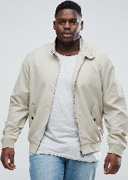 plus summer lined harrington jacket