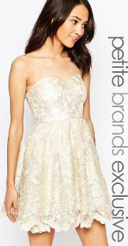 chi  london petite  embroidered lace bandeau prom dress