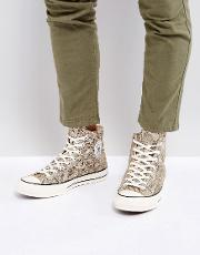 chuck taylor all star '70 snake pack hi plimsolls in brown 158856c