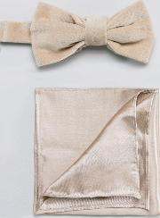 taupe velvet bow tie with satin pocket square