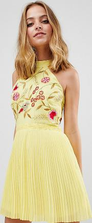 Embroidered Top Pleated Mini Dress