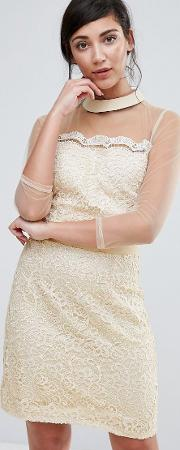 shift dress with mesh sleeve