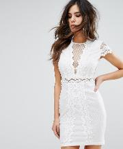 Bodycon Dress In Mesh Lace Contrast