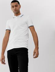 Polo With Tipped Collar