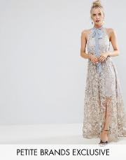 halter neck maxi dress in allover floral embroidery