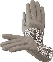 b33958dd4cfdc Ladies Python Leather Gloves. aspinal of london