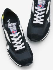 Walsh Trainers