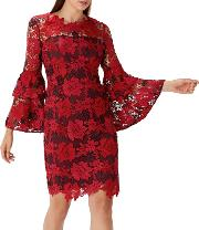 Red Lace elsa Bell Sleeve Shift Dress