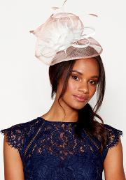 Pink Pointed Feather Swoop Fascinator
