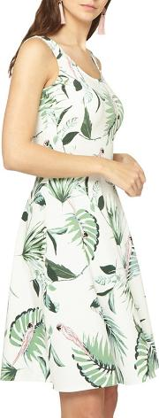 Tall Ivory Parrot Fit And Flare Dress