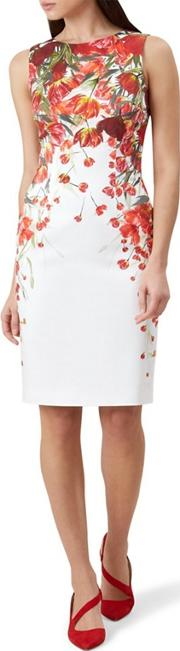 Red Floral Print fiona Pencil Dress