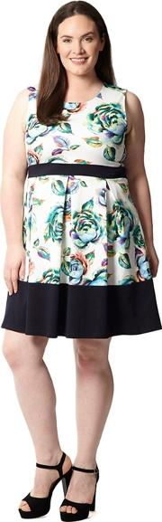 Blue Plus Size Floral Fit And Flare Dress