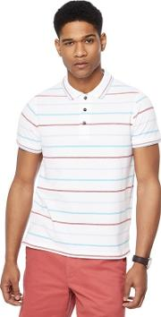 New England Big And Tall White Columbus Stripe Tailored Fit Polo Shirt