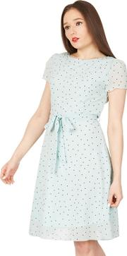 Light Green Polka Dot Print Chiffon Skater Dress
