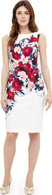 Cream Cassia Floral Printed Dress