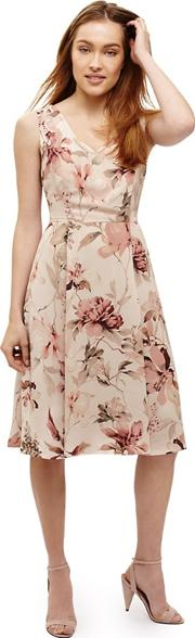 Pink Vivien Floral Printed Dress