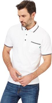 Big And Tall White Tipped Polo Shirt