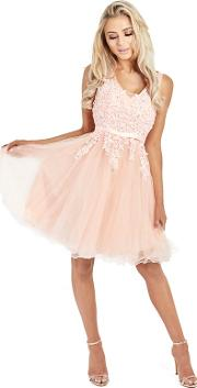 Blush tenny Mesh Embroidered Lace Skater Prom Dress