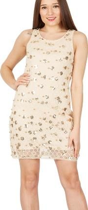 Beige Sequin Beads Embroidered Lace Dress