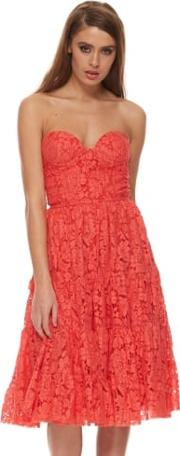 Kiss Them For Me Red Lace Skater Dress With Bustier Top