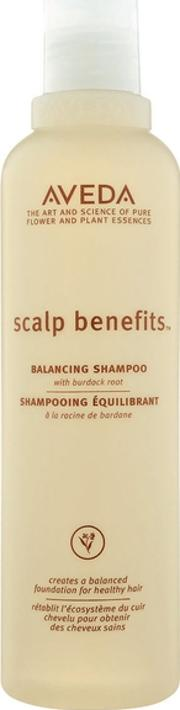 Scalp Benefits Shampoo 250ml