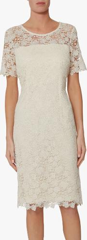 Sapphire Lace Embroidered Dress