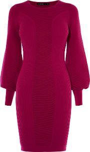 Drama Sleeve Knitted Dress