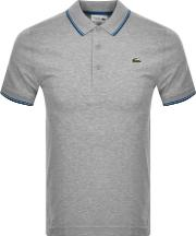 Tipped Polo T Shirt