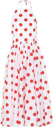 Exclusive To Mytheresa Gretta Dotted Stretch Cotton Dress