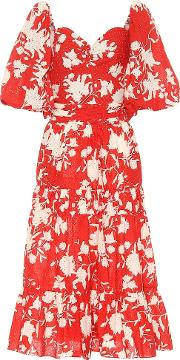 Beautiful Chaos Floral Cotton Dress