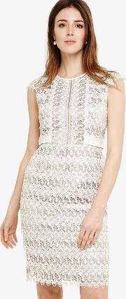 bf28dd1df6e wallis Little Mistress White Lace Midi Dress