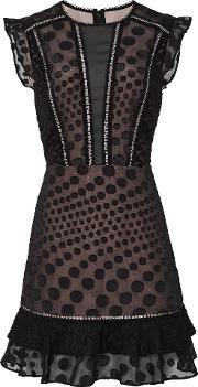Alexa Lace Overlay Fit And Flare Dress