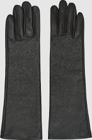 Carla Long Leather Gloves