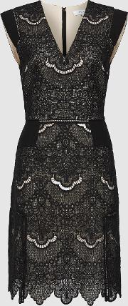 Gemina Lace Fit And Flare Dress