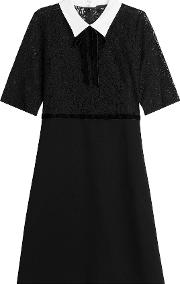 Lace Dress With Contrast Collar