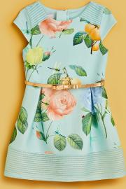 Distinguished Rose Scuba Dress