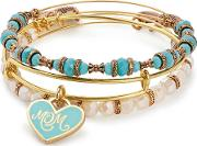 Color Infusion Mom Bangle Set A17set01sg