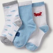 Whale Socks Pack Of 3