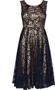 Jolie Moi Navy Contrast Lace Midi Fit And Flare Dress