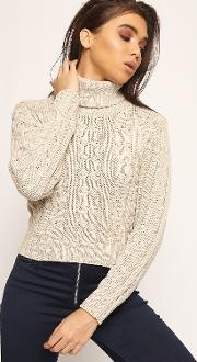 Indie Chunky Cable Knitted Turtleneck Cropped Jumper
