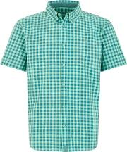 Newton Button Down Gingham Check Shirt